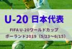 【メンバー変更有り】18歳遠藤、坂口招集!なでしこジャパン(日本女子代表)メンバー発表! FIFA女子ワールドカップ フランス 2019(6/7~7/7)