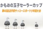 組合せ掲載 セーラーカップ 6/1開幕 | 2019年度 第46回岩手県サッカースポーツ少年団大会(かもめの玉子セーラーカップ)