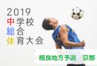 JFA U-12サッカーリーグ2019山梨 前期