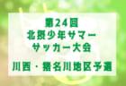 2019年度 第73回愛知県高等学校総合体育大会サッカー競技 知多支部 インターハイ 優勝は大府東高校