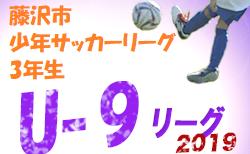 前期終了結果掲載 第52回藤沢市少年サッカーリーグ 前期 3年生の部 | 2019年 第52回藤沢市少年サッカーリーグ 前期 3年生の部 神奈川