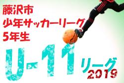 前期終了結果掲載 第52回藤沢市少年サッカーリーグ 前期 5年生の部   2019年 第52回藤沢市少年サッカーリーグ 前期 5年生の部 神奈川