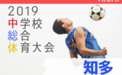 2019年度 知多地方体育大会 郡大会 サッカー競技 愛知【ベスト8決定】次回準々決勝 7/24開催