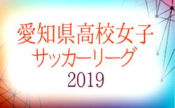 2019年度 愛知県高校女子サッカーリーグ 12/8結果更新!次回 2部、3部12/14開催