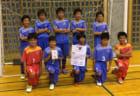 優勝はPELADA FC ハトマーク3ブロック | 2019年度ハトマーク フェアプレーカップ第38回東京都4年生サッカー大会 第3ブロック予選