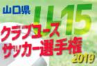 2019年度 愛知 第5回ヨシミカップ 兼 第1回 OKAYA CUP/オカヤカップ 愛知県ユースU-10大会 東三河予選 優勝はラランジャ豊川!