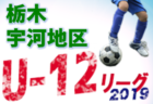 【栃木県】ブログランキング 8/1~8/31に見られたサッカーブログベスト10