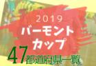 【2019年度バーモントカップ】6/22は山口・広島・宮城、6/23は愛知・鳥取で代表決定!【47都道府県】
