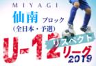 2019年度 第31回JA東京カップ 5年生大会 第13ブロック予選 優勝は西原Jr.SC!