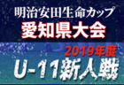 2019年度 第5回 明治安田生命カップ兼 第41回 U-11サッカー新人大会  愛知県大会  ベスト8決定!次回1/25開催!