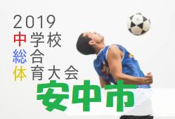 2019年度 安中市中学校総体サッカー大会 群馬 優勝は新島学園!