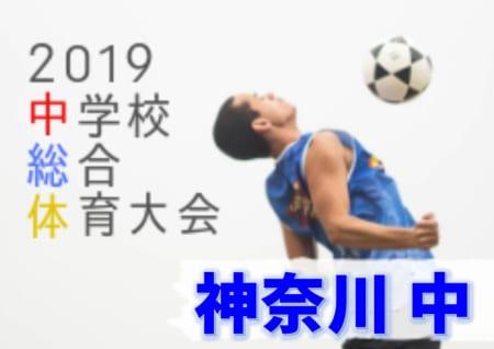 秦野市代表決定!! 2019年度 第53回神奈川県中学校総合体育大会 中ブロック予選