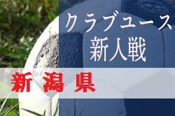 優勝はF.THREE!2019年度 新潟県クラブユースサッカー(U-14)新人大会