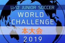 組合せ掲載!U-12ジュニアサッカーワールドチャレンジ2019 本大会 8/29~9/1 大阪開催!