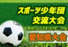 2019年度  サッカーカレンダー【愛知県】年間スケジュール一覧