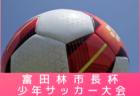 2019-2020 アイリスオオヤマプレミアリーグ東京U-11 1部・2部 9/7まで結果掲載!次回日程募集!