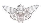優勝は星稜ジュニア(石川)2019年度 第13回ピーチカップU-10 長野