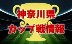 【第3回JrグラナーテCUP U-7掲載】神奈川県12月のカップ戦優勝・上位チーム紹介(随時更新)