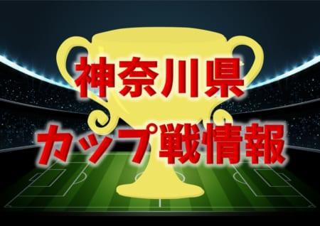 【茅ヶ崎市長杯U-11掲載】神奈川県12月のカップ戦優勝・上位チーム紹介(随時更新)