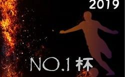 2019年度 NO.1杯(宮崎県)優勝はソレッソ鹿児島!