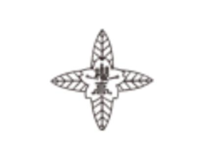 日本大学櫻丘高校 部活体験会9/8,9/14~16開催 2019年度 東京都