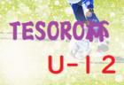 優勝はDREAM FC!2019年度 第9回 TESORO杯 U-12(大阪開催)