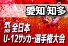 2019年度 JFA第43回全日本U-12サッカー選手権大会 兵庫大会 尼崎予選 優勝は武庫之荘FC!
