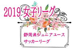 2019年度 第15回静岡県女子ジュニアユースサッカーリーグ  情報お待ちしています!