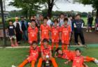 【優勝写真掲載】2019 U-10レイソルカップ  優勝は大宮アルディージャ!その他の情報をお待ちしています!