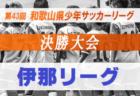 【長野県】ブログランキング 11/1~11/30に見られたサッカーブログベスト10