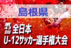 高円宮杯 JFA U−18サッカーリーグ2019プリンスリーグ関西 プレーオフ(参入戦)初芝橋本・履正社・産大附昇格決定!