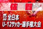 2019年度 兵庫県クラブユースサッカー(U-14)新人戦 優勝はFCフレスカ神戸!