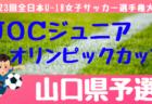 2019年度 第52回愛媛県スポーツ少年大会 サッカー競技 結果掲載!Aブロック優勝は八幡浜!