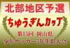 2019中国プログレスリーグU13 結果情報掲載 次節12/21.22