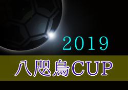 2019年度 八咫烏CUP U-12 Football Festival(高知県) 優勝は名古屋グランパス U-12!