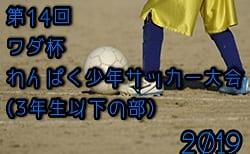 2019年度 第14回 ワダ杯わんぱく少年サッカー大会(3年生以下の部)優勝はFC高知横内B!
