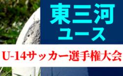 2019年度 東三河ユースU-14サッカー選手権大会(愛知) 情報お待ちしています!
