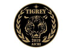2019年度 TIGREY愛知FC U-12(ティグレイ) 無料体験会  毎火木金(11月下旬~2月下旬)開催  愛知