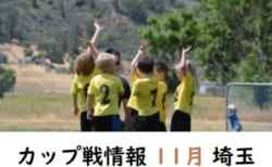 11月のカップ戦まとめ(埼玉)大会、結果情報お待ちしています