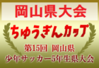 2019年度 第41回 かつらぎサッカー大会 新人戦2部U-10(奈良県開催) 優勝はディアブロッサ高田FC!