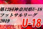 2019年度 2020葛城ニューイヤーカップU-11(奈良県開催) 優勝はディアブロッサ高田FC!