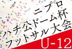 2019年度 第22回ニプロハチ公ドーム杯フットサル大会 U-12(秋田県)1/11,12開催!情報おまちしています
