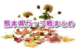 2019年度10月~12月の熊本県カップ戦まとめ(優勝・上位チーム紹介)【随時更新】
