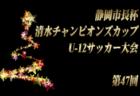 高円宮杯 JFA U-18サッカーリーグ2019 山梨 優勝は山梨学院!