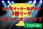 2019年度 第3回栃木県サッカー協会長杯 3種リーグチャンピオンシップ 11/23,30開催!組合せ情報をお待ちしています!