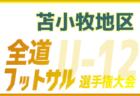 【広島県】第98回高校サッカー選手権出場校の出身中学・チーム一覧【サッカー進路】