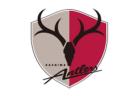 2019 ALL GUNMA(オールグンマ)セキチューCUP U-10(群馬)12/15開催!組合せ掲載