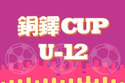 2019年度 第27回銅鐸カップ(U-12)【滋賀県】優勝は野洲JFC!未判明情報をお待ちしています!