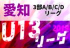2019年度 愛知県U-13リーグ<TOP/1部/2部リーグ> TOPリーグ優勝は名古屋FC EAST!