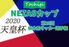 【大会途中で中止に】2020年度 NEZASカップ第25回栃木県サッカー選手権大会 1次予選会 3/8までの結果掲載!